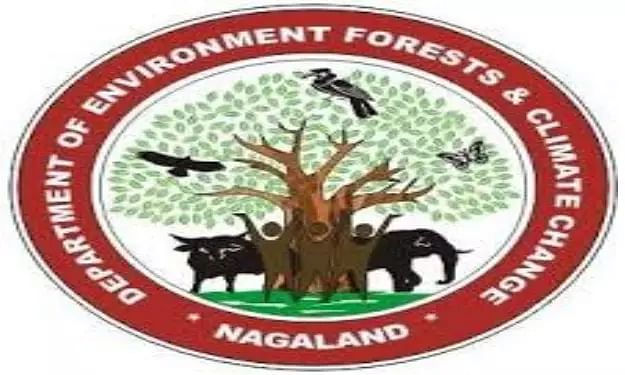 Department Of Environment Forests & Climate Change