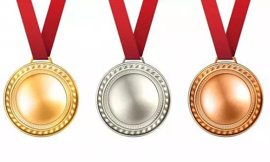 Wushu National Championship Assam medal tally