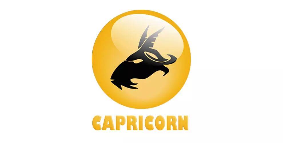 Capricorn : (December 22 - January 20)