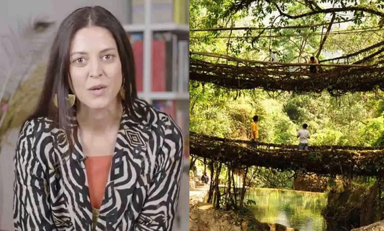 Meghalayas living root bridges hailed by architect Julia Watson as effective measure against flood