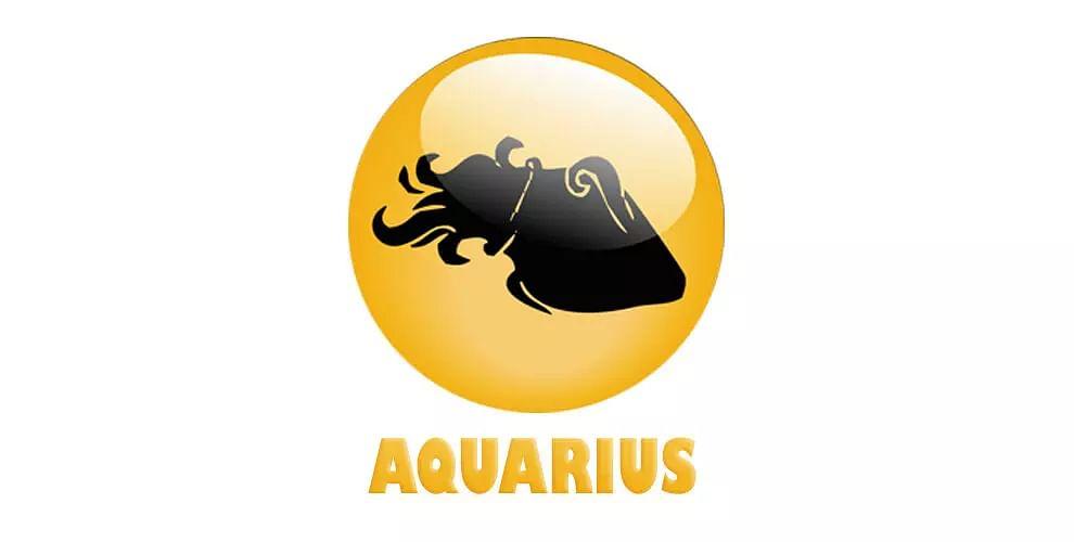 Aquarius: (January 21 - February 18)
