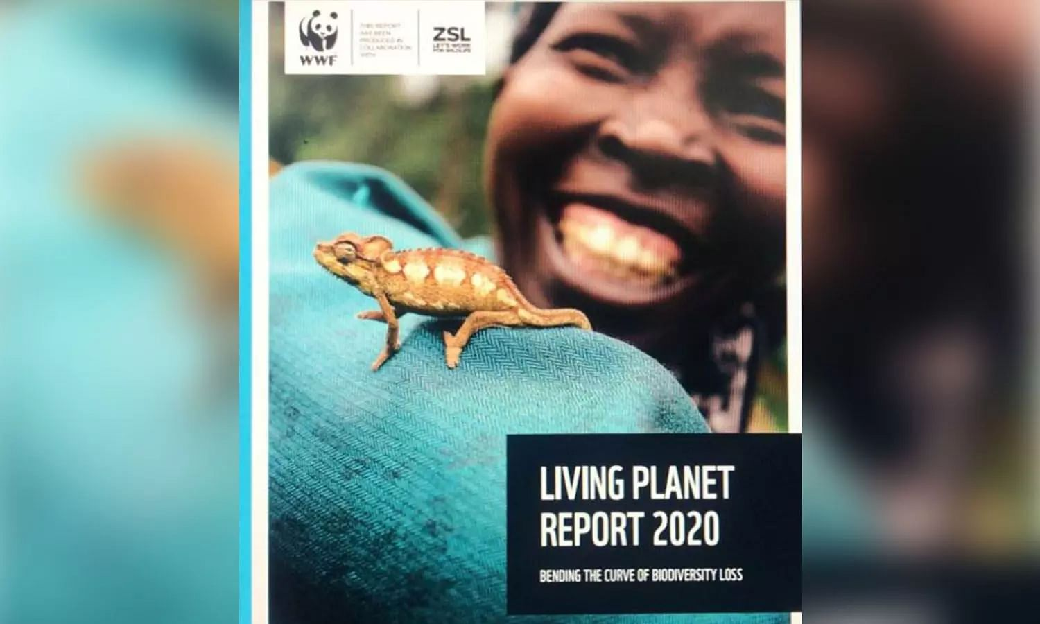 Wildlife Population dips by 68% in 46 years, bold efforts needed to reverse trend: WWF Report