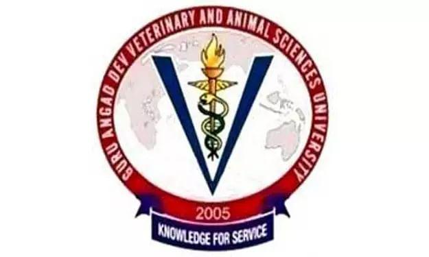 GADVASU Recruitment 2020