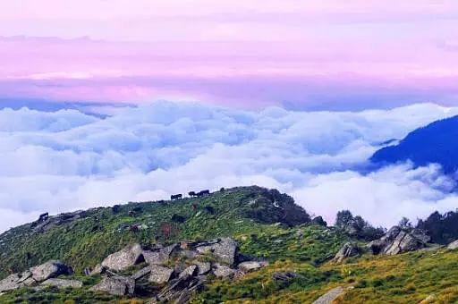 Uttarey trek in Sikkim opens for tourists