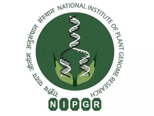 NIPGR Recruitment 2020