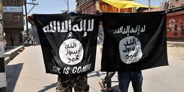 24 Islamic State militants killed in Iraq
