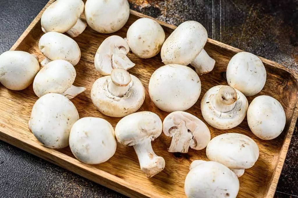 Mushroom: its benefits and side effects