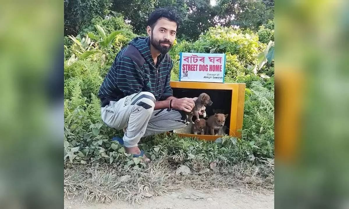 Assam guy turns old TV sets into dog kennels, houses stray dogs