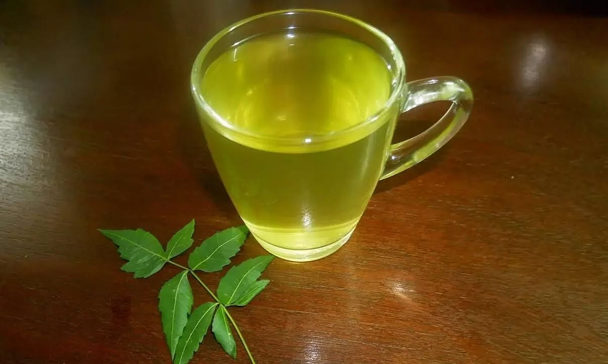 Neem Tea: It's benefits, uses and the recipe