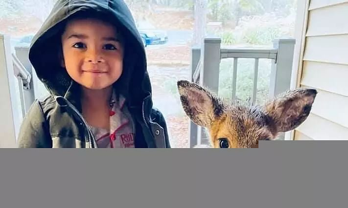 4-Year-Old Befriends Baby Deer, Brings Back Home for Cereal