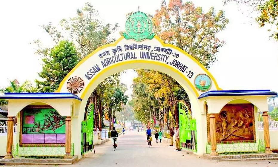 Assam Agricultural University(AAU) Jorhat Job Recruitment 2021 -1 Dean Vacancy, Job Openings