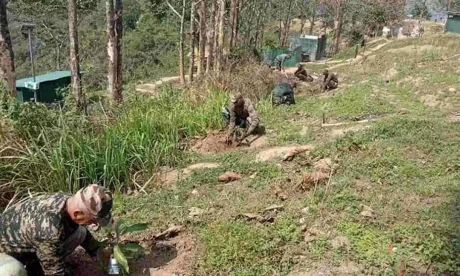 Tree plantation drive organized in Mizoram bases of Assam Rifles