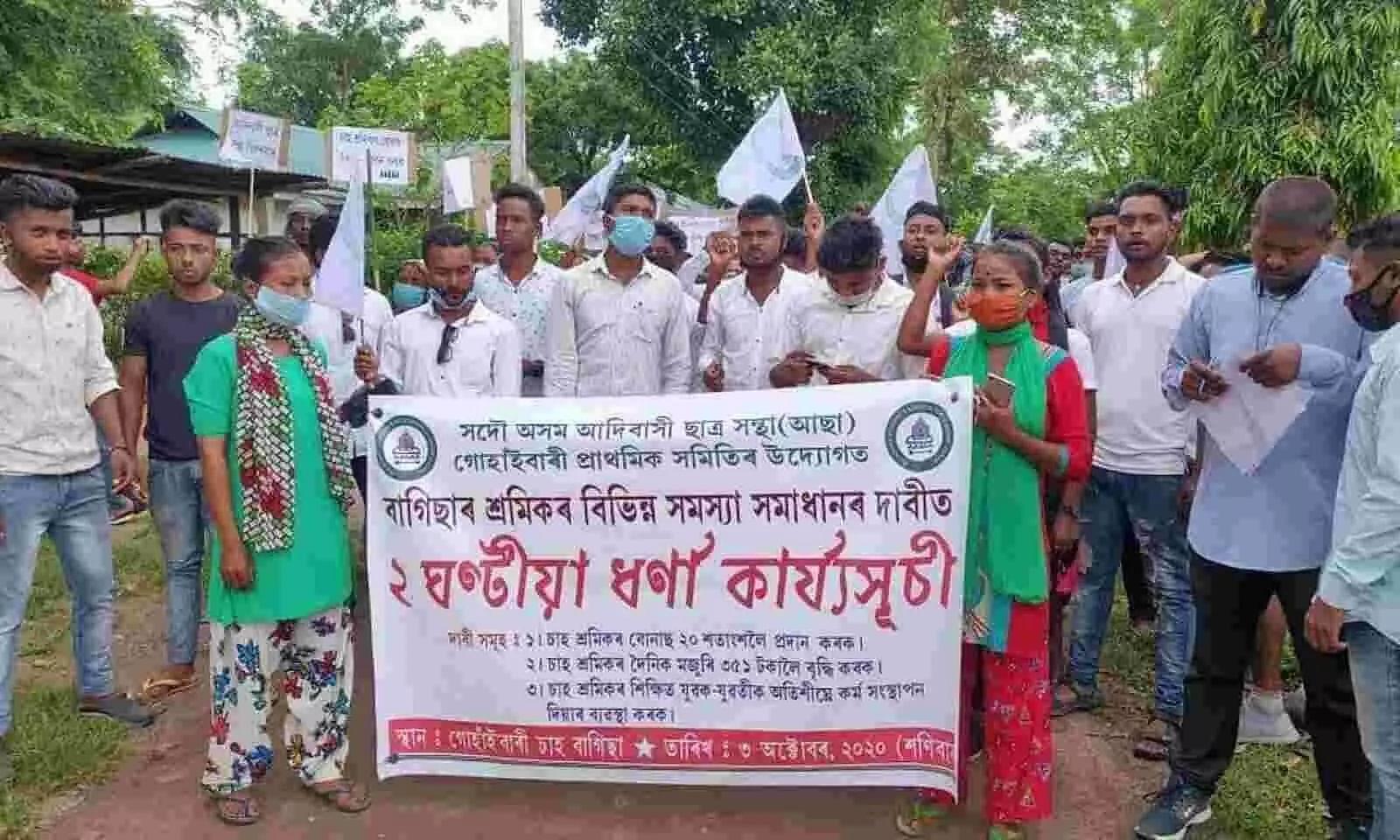 AASAA stages protest in Gossainbari Tea Estate near Demow