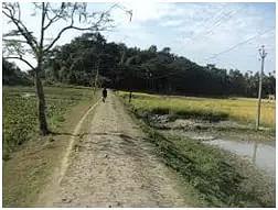 Mariani Constituency