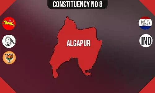 Algapur Constituency - Population, Polling Percentage, Facilities, Parties Vote Share, Last Election Results
