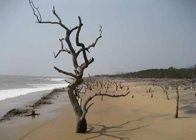 Rehabilitation of erosion-hit families