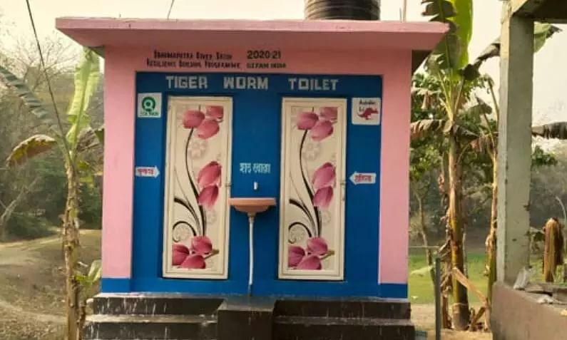 Tiger Worm Toilet