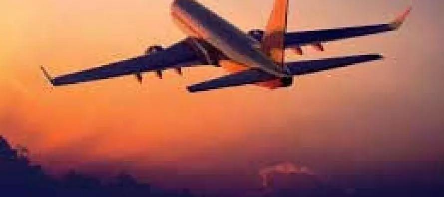 Airlines clamour to reduce operational capacity