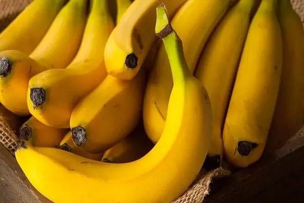 India exports Rs 619 cr banana during 2020-21