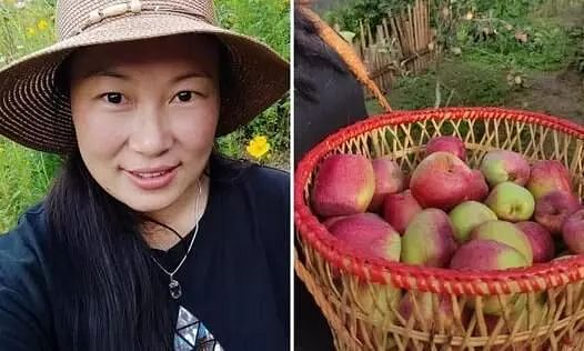 This Manipuri Woman Left Her Lucrative Job in Singapore to Grow Apples in Ukhrul