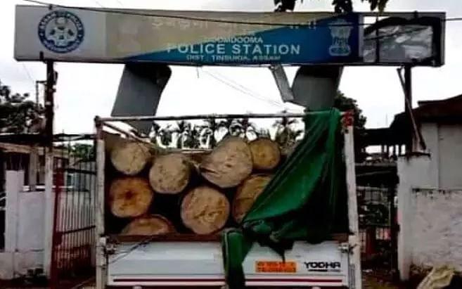 Timber-laden truck