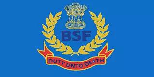 BSF School Shillong Recruitment 2021 -  PGT (Maths) Vacancy, Job Openings