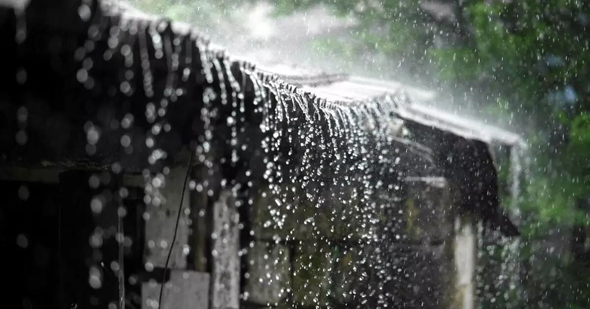 Rainfall In August Lowest In 19 Years, Says IMD