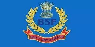 BSF Senior Secondary School Recruitment 2021: PGT, TGT & UDC Vacancy, Job Openings