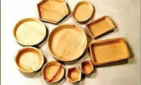 Assams Plates Made from Betel Nut Trees Captures International Market of England, Austria & Japan